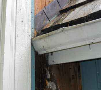 home inspections sammamish